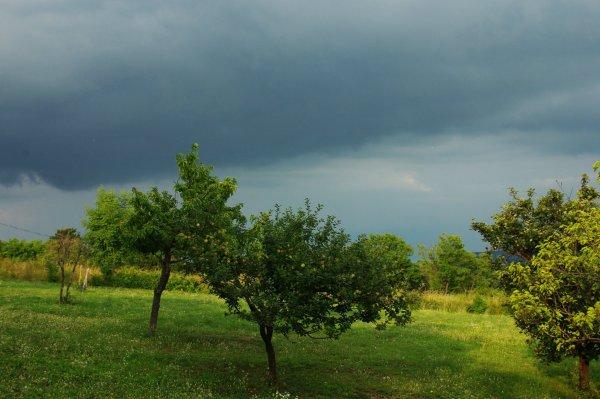 vihar3